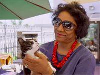 #BeautifulNews: A cappuccino and a dash of catnip - inside SA's first cat café