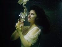 Sincerely Anne - 'Transcend'