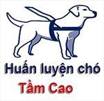 huanluyencho tamcao