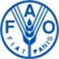 Libya, FAO agree on close cooperation