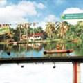 Costa Rica's living billboards