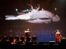 UCT Choir brings goosebumps at GIPCA