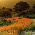 Tourism celebrates Kirstenbosch win