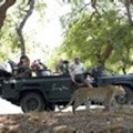 Singita takes top honours in Travel + Leisure World's Best Awards 2011