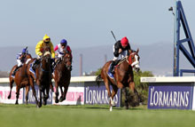 Elegance and excellence at L'Ormarins Queen's Plate