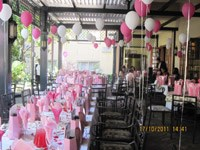 Ciro's support for PinkDrive proves successful