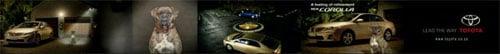 15 Toyota Corolla: Blue Danube