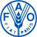 Africa a priority for new FAO chief