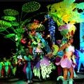 Fourth Cape Town Carnival to be held in March 2013