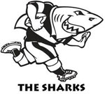 Sharks announces appointment of new chairman and director