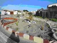 Garden projects brighten up waste ground in Cape Town