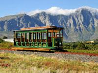 Explore Franschhoek Wine Valley by tram