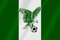 Super Eagles of Nigeria are new African champions