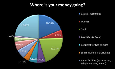 Hotels and their financial challenge - an infographic