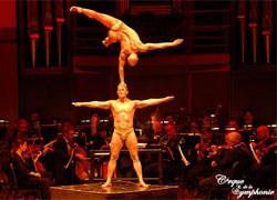 Music meets magic at Cirque de la Symphonie