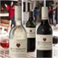 Beyerskloof Wines for Mozambique