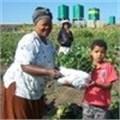 AgriHUB helps small-scale Kwazulu-Natal farmers