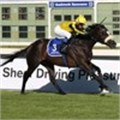 Cape Town Noir wins at L'Ormarins Queen's Plate