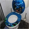 Oprah: It's all cisterns go