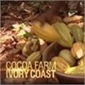 CNN International launches 'Cocoa-nomics'