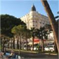 Cannes Lions announces juries
