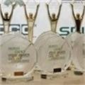Enter the 2014 Stevie Awards