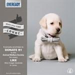 'Like' Eveready, support charities in Port Elizabeth