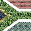 FCB South Africa finds another way to 'Keep Flying' SA's flag