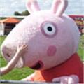Publisher prohibits pork talk