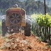 Report quantifies impact of SA wine industry on GDP, job creation