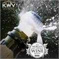KWV receives recognition as a global brand