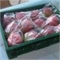Fruit packaging is feeling the flow