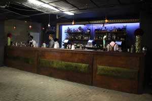 The Union Bar and Hendrick's Gin - a distinctly odd pairing