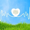 Does your marketing have a heartbeat? - Forever Friday