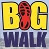 Thousands walk Durban together at the Discovery East Coast Radio Big Walk