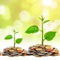 UN report charts pathway to a sustainable investment chain
