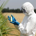 15 EU nations opt to stay GMO-free