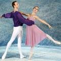 Spectacular Symphony of Dance