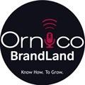 BrandLand (Episode 2): Uncovering Supersport's social media secrets