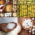 A sticky situation: SA's sugar industry woes