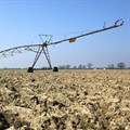 Ten tips to overcome the impact of the drought