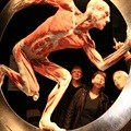 Sci-Bono hosts Body Worlds Vital in Johannesburg