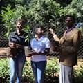 L-R: Purity Kabuba, Koppert; Jennifer Githaiga, Koppert; John Orwa, forester at Karura Forest