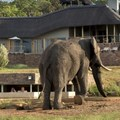 New game lodge open in Welgevonden Game Reserve