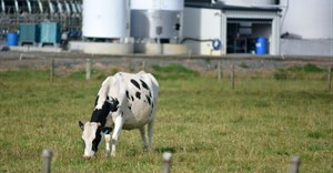 Supply issues to push milk prices up