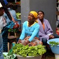 DA to launch investigation into effects of drought on Informal traders, communal farmers