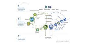 Moving SA towards a restorative, circular waste economy