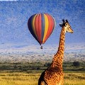 21 reasons why you should go on a balloon safari in the Masai Mara