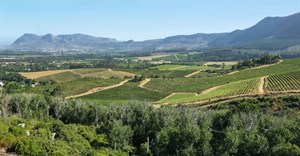 Constantia Valley opens tourism office