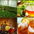 Is the global health trend bringing out the 'best' in tea?